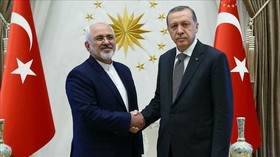 Zarif discusses Syria crisis with Turkish president