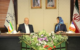 Iran to establish 5.000 MW renewable power plants