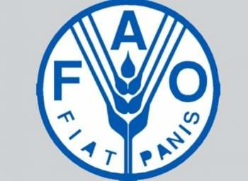 FAO shares int'l expertise, knowledge with Iran in Early Warning Early Action systems