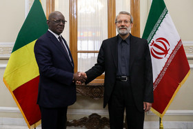 Iranian, Malian Parliament Speakers meet in Tehran