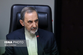 Those who are in Syria without government's permission must go not Iran: Velayati