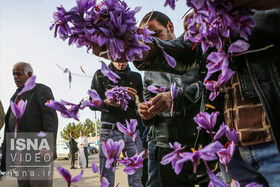 Iran's saffron export reaches more than $252 million