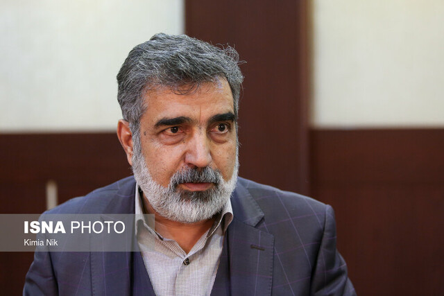 Elements behind Natanz incident, Martyr Fakhrizadeh's assassination the same: AEOI spokesman
