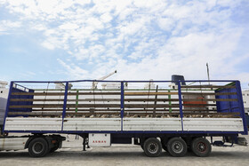 First import of Romanian sheep into Iran, Iran, Chabahar Port, March 15, 2019.