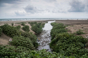 Wastewater in Fereidunkenar Coast, Mazandaran, Iran, August 12, 2019.