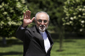 Head of Iran's Atomic Energy Organization Ali Akbar Salehi is seen on the sidelines of Iran's cabinet session, Tehran, Iran, May 15, 2019.