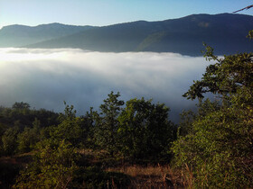 Roudabarak Shahmirzad Forest is seen in the photo, July 23, 2019. If you dream of walking on the cloud, you can fulfill it here, in Roudbarak Shahmirzad Forest, but not exactly walking on the cloud, you can walk beyond them. The Forest is a tourist destination located 68 kilometers north-eastern Semnan Province in Parvar protected Area.