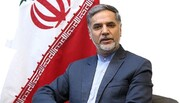 Iran supporting Syria's territorial integrity: MP