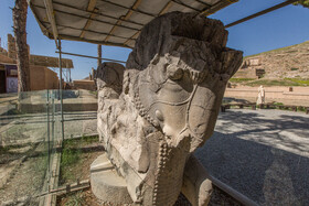 The stone lion of Persepolis is in a bad condition, Shiraz, Iran, August 24, 2019. Persepolis was included on UNESCO World Heritage List in 1979, but after being included on the List, the archeological excavations carried out by archeologists and paying no attention to the current magnificent ruins of Persepolis have caused damages to the royal city of Persepolis which should be considered as a serious risk to it.