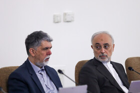Minister of Culture and Islamic Guidance Abbas Salehi (L) and Head of Iran's Atomic Energy Organization Ali Akbar Salehi are present in the session of Iran's cabinet ministers, Tehran, Iran, October 9, 2019.