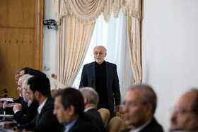 Head of Iran's Atomic Energy Organization Ali Akbar Salehi is seen on the sidelines of the session of Iran's cabinet ministers, Tehran, Iran, February 5, 2020.