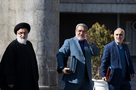 On the sidelines of the session of Iran's cabinet members, Tehran, Iran, February 12, 2020.