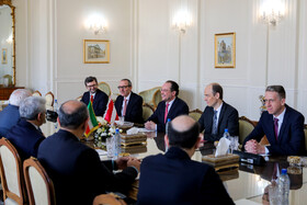 The meeting between Iranian Foreign Minister Mohammad Javad Zarif and Austrian Foreign Minister Alexander Schallenberg, Tehran, Iran, February 23, 2020.