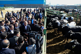 Some animal husbandry projects are launched in the presence of Iranian First Vice-President Es'haq Jahangiri, Bushehr, Iran, December 23, 2019.