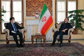 Iran's support for Syria to continue until complete defeat of terrorism: Amir-Abdollahian