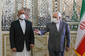 Iran, Afghan FMs meet in Tehran