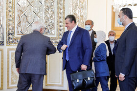 On the sidelines of the meeting between Iranian Foreign Minister, Mohammad Javad Zarif (L), and Chairman of the Russian State Duma Foreign Affairs Committee, Leonid Slutsky (2nd, L), Tehran, Iran, August 2, 2020.