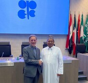 Iran's deputy FM meets with OPEC secretary general