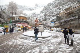 The autumn snow covers the northern parts of Tehran, Iran, December 7, 2020.