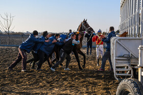 Horse racing in Gonbad Kavous