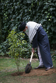 Iran's Supreme Leader Ayatollah Ali Khamenei plants a sapling on the occasion of the National Week of Natural Resources, Tehran, Iran, March 5, 2021.
