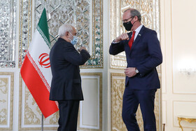 Irish, Iranian FMs meet in Tehran