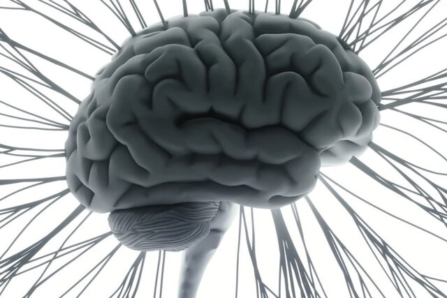 The wonders of brain in respect to music