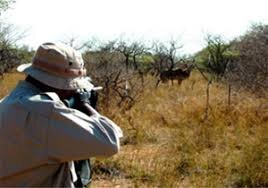 Arrest of three groups of hunters in Fars