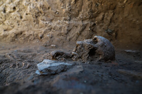The discovery of the skeleton of a woman dating back to the reign of Parthian Empire, Isfahan, Iran, July 27, 2020. The skeleton of a woman and the skeleton of a horse dating back to the Parthian Empire, was discovered during an archeological excavation in the historical hill of Ashraf located in Isfahan City.