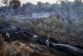 Fire in Karkheh Nature Reserve and the habitat of Persian fallow deer, Khuzestan, Iran, September 5, 2021. Fortunately, the fire was extinguished by firefighters before reaching the habitat of Persian fallow deer.